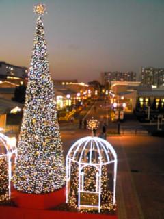 クリスマス景色