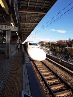 Shin014